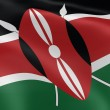 Kenyan flag in the wind — Stockfoto
