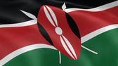 Kenyan flag in the wind — Stock Photo