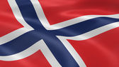 Norwegian flag in the wind — Stock Photo