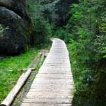 Wood path — Stock Photo