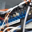 Stock Photo: Patch panel