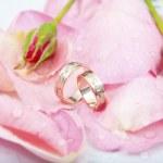 玫瑰和结婚戒指与主要业务包括滴 — 图库照片