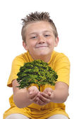 Boy With Tree In Palm — Stock Photo