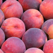 Fresh nectarines in vegetable market — Stock Photo