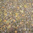 Cobbles — Stock Photo #2839688