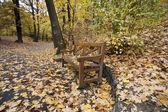板凳 — 图库照片