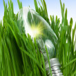 Lamp in a grass — Stock Photo