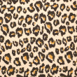 Leopard print textured background — Stock Photo