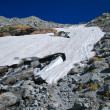 Alpine glacier in summer day — Stock fotografie