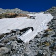 Alpine glacier in summer day - Stock Photo