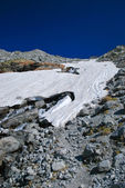 Alpine glacier in summer day — Stock Photo