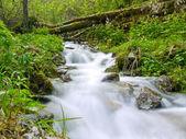 Stopped waterfall — Stock Photo