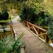 Small bridge — Stock Photo #2835525