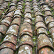 Stock Photo: Old tile