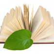 Royalty-Free Stock Photo: Launched book with a green leaf