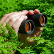 Royalty-Free Stock Photo: Binoculars in hand from the bushes