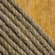 Texture of ropes — Stockfoto #5099159