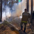 Fireman in forest fire in Russia — Stock Photo