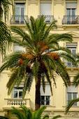 Luxury Nice, French Riviera — Stock Photo