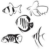 Aquarium fish. Line drawing. — Stock Vector