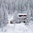 Cozy isolated home in winter forest — Foto de Stock