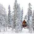 Christmas cottage in winter wonderland — Stock Photo