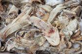 Frozen fish waste — Stock Photo