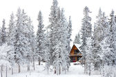 Christmas cottage in winter wonderland — Stok fotoğraf