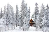 Jul stuga i vinterlandskap — Stockfoto