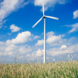 Windfarm on agricultural land — Stock Photo