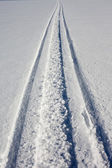 Skidoo track in fresh clean snow — Stock Photo