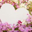 Stock Photo: Flower greetings from heart