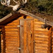 Log cabin with moose antler — Stock Photo #3892076