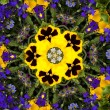 Stock Photo: Flower kaleidoscope resembling mandala