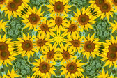 Flower kaleidoscope resembling a mandala — Stock Photo