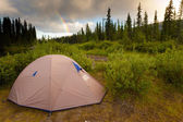 Wilderness Camping Concept — Stock Photo