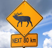Elk Road sign — Stock Photo