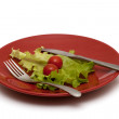 Dietary food on the plate — Stock Photo