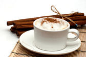 Cappuchino and cinnamon sticks — Stock Photo