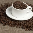 White mug on coffee beans and sacking — Stock Photo #3604511