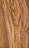 Fine olive wood texture — Stock Photo