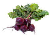 Fresh bunch of beetroot — Stock Photo
