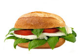 Italian sandwich with fresh buffalo mozzarella — Stock Photo