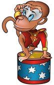 Circus Monkey — Stock Vector