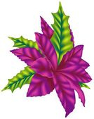 Violet Poinsettia — Stock Vector