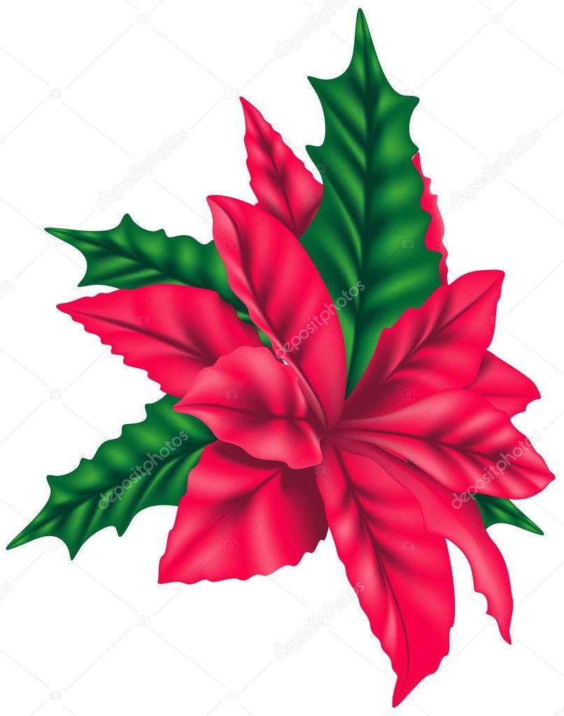 Snap Red Weihnachtsstern ClipArt Weihnachtsstern Clipart Clipart ...