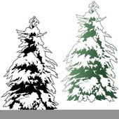 Snowy Coniferous Tree — Stock Vector