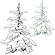 Stock Vector: Snow Covered Conifer