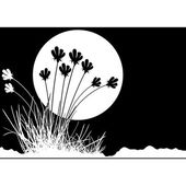 Grass and Moon — Stock Vector