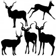 Antelope Silhouettes — Stock Vector #3247048